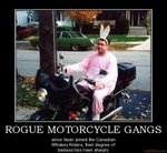 rogue-motorcycle-gangs-sean-demotivational-poster-1279823175.jpg